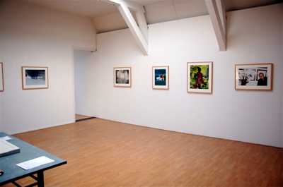 Exhibiton View Vulnerability: A Selection of Works from the Flatland Foundation