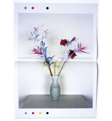 Jaap Scheeren: Fake Flowers in Full Colour preview