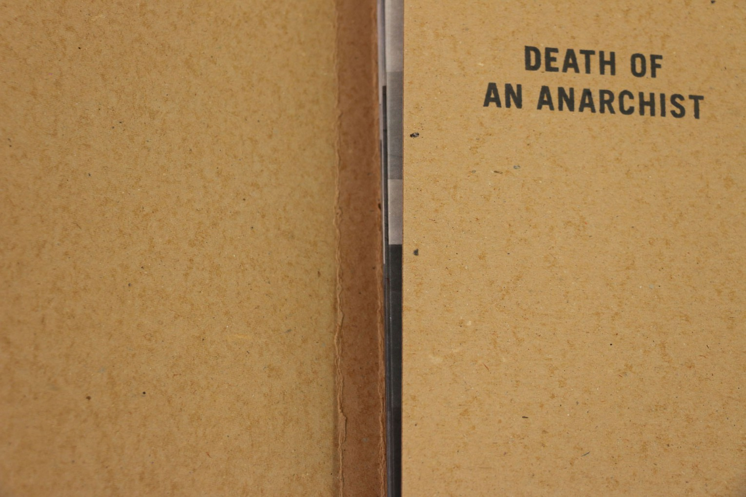 Death of an Anarchist preview