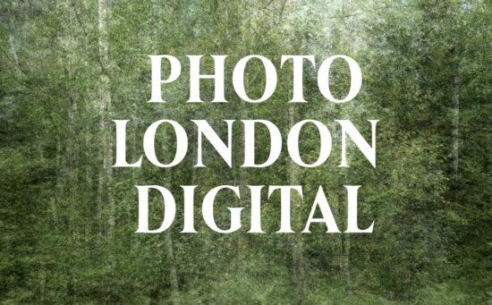 Fair impression for Photo London Digital - Flatland Gallery Amsterdam