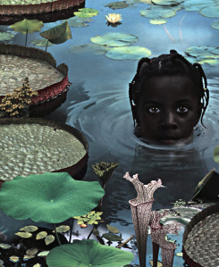 Exhibition view Ruud van Empel 25 years of photo works 1995 – 2020 - Flatland Gallery Amsterdam