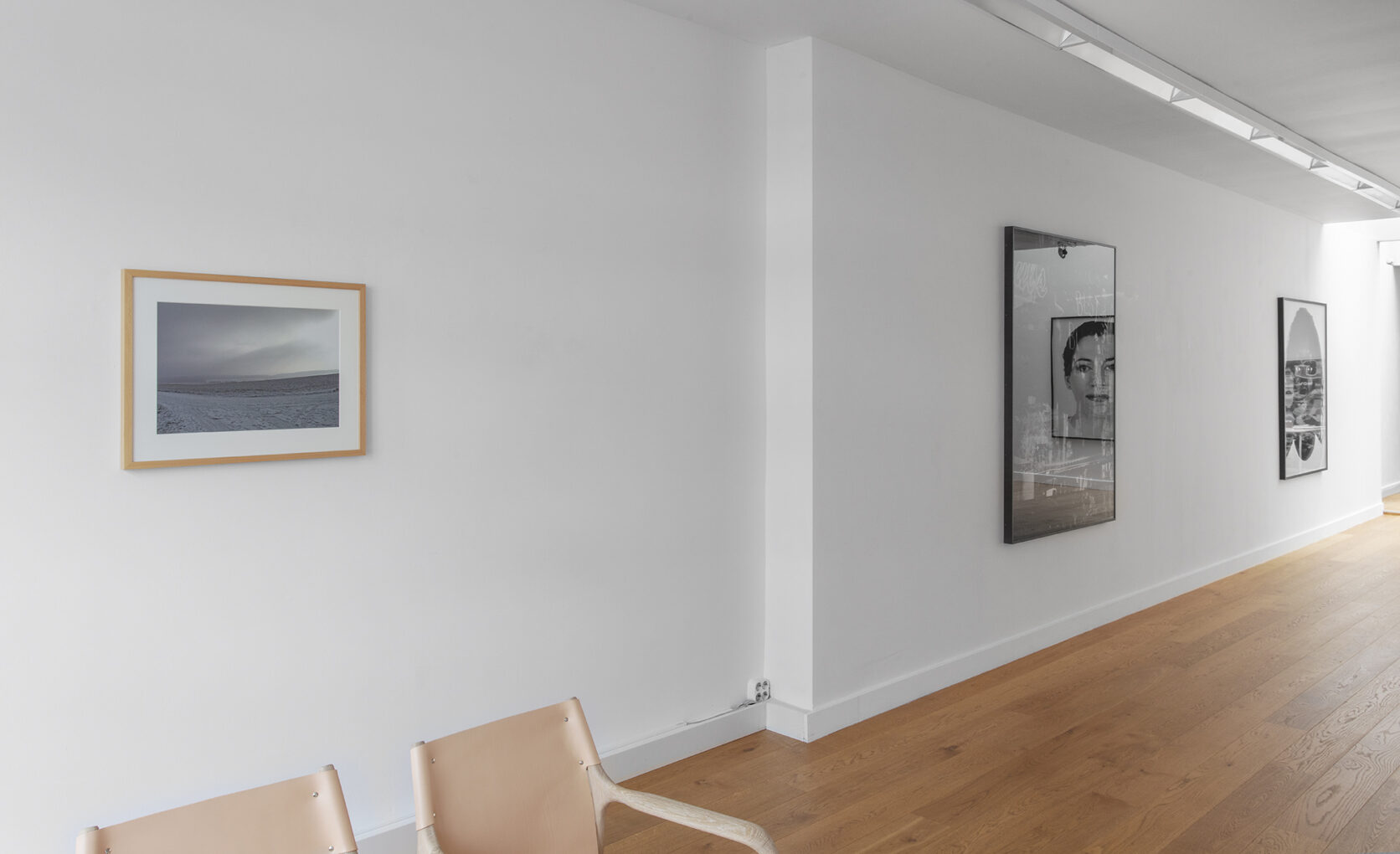 Exhibiton View In Parallel